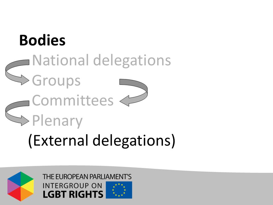Bodies - National delegations - Groups - Committees - Plenary -(External delegations)