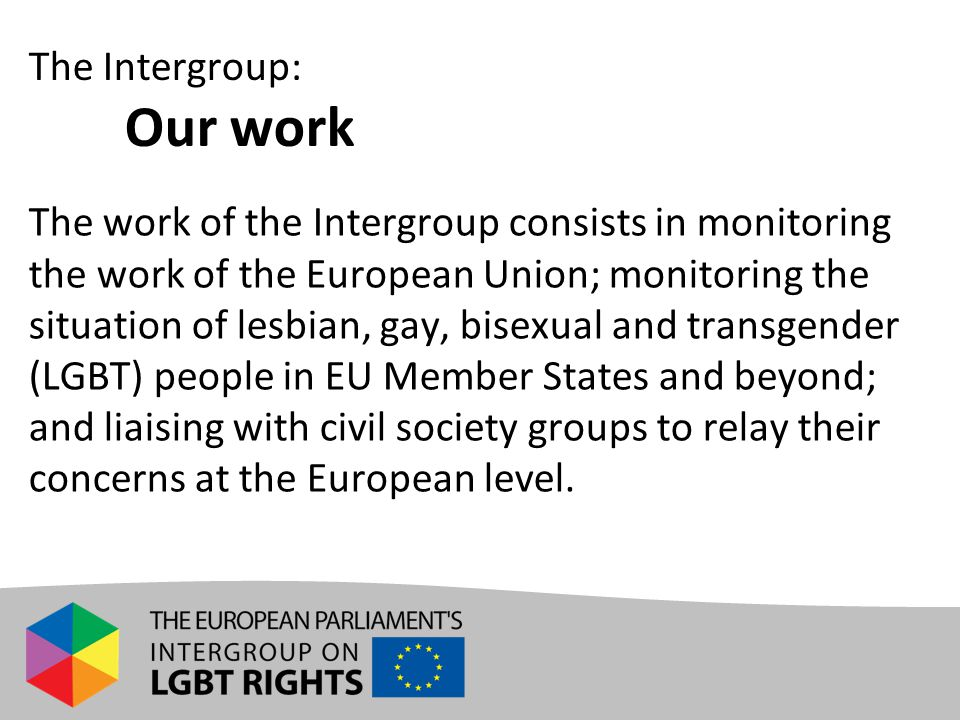 The work of the Intergroup consists in monitoring the work of the European Union; monitoring the situation of lesbian, gay, bisexual and transgender (