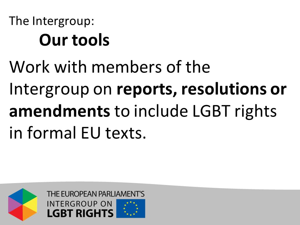 Work with members of the Intergroup on reports, resolutions or amendments to include LGBT rights in formal EU texts. The Intergroup: Our tools