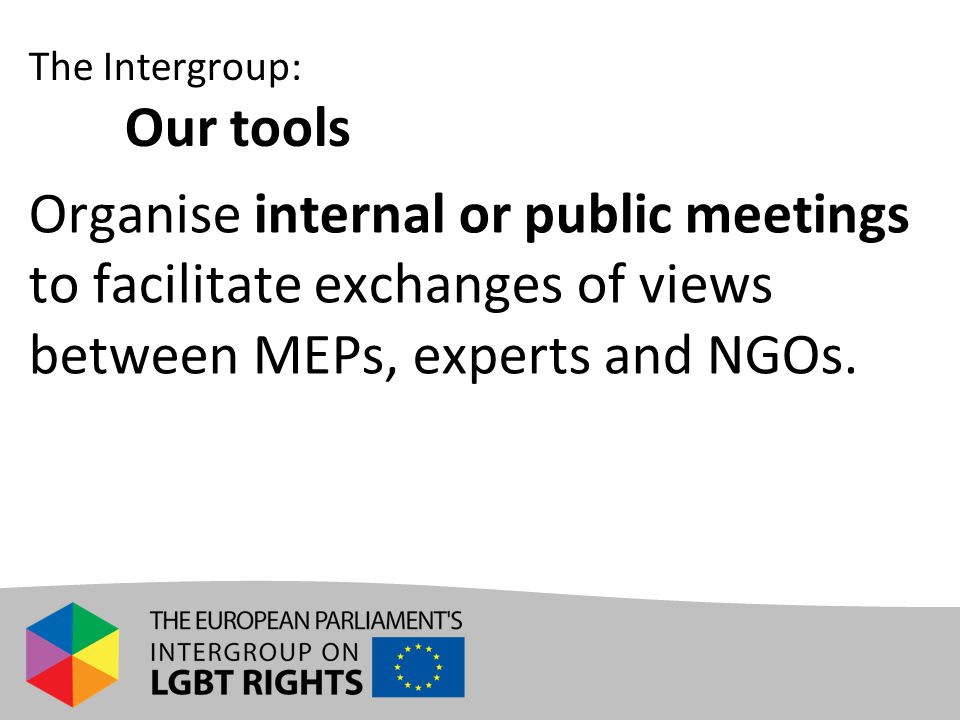 Organise internal or public meetings to facilitate exchanges of views between MEPs, experts and NGOs. The Intergroup: Our tools
