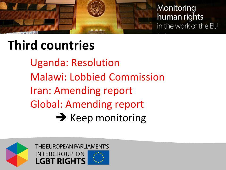 Third countries Uganda: Resolution Malawi: Lobbied Commission Iran: Amending report Global: Amending report  Keep monitoring