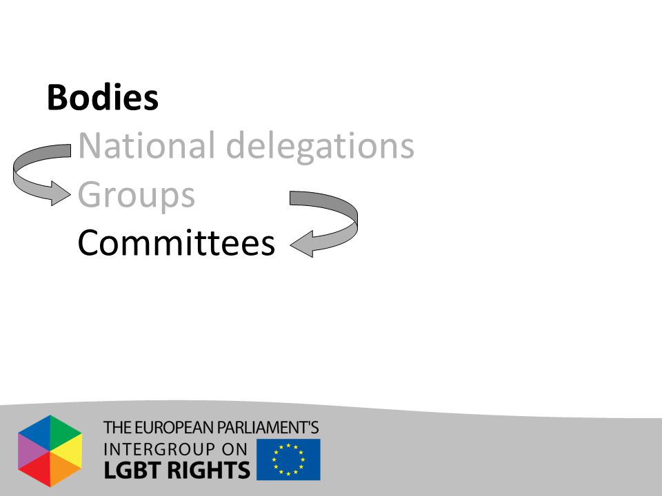 Bodies - National delegations - Groups - Committees