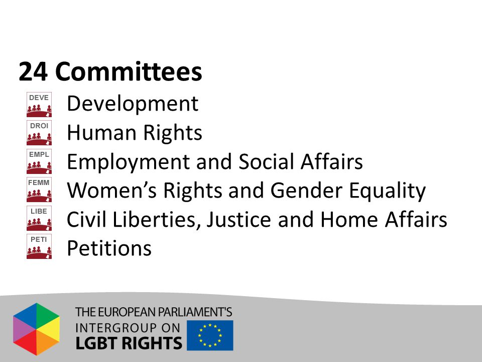 24 Committees Development Human Rights Employment and Social Affairs Women's Rights and Gender Equality Civil Liberties, Justice and Home Affairs Petitions