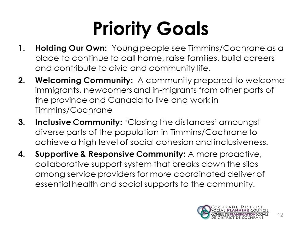 Priority Goals 1. Holding Our Own: Young people see Timmins/Cochrane as a place to continue to call home, raise families, build careers and contribute