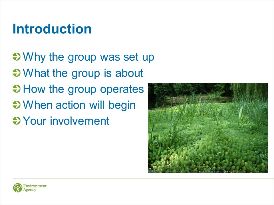 Introduction Why the group was set up What the group is about How the group operates When action will begin Your involvement