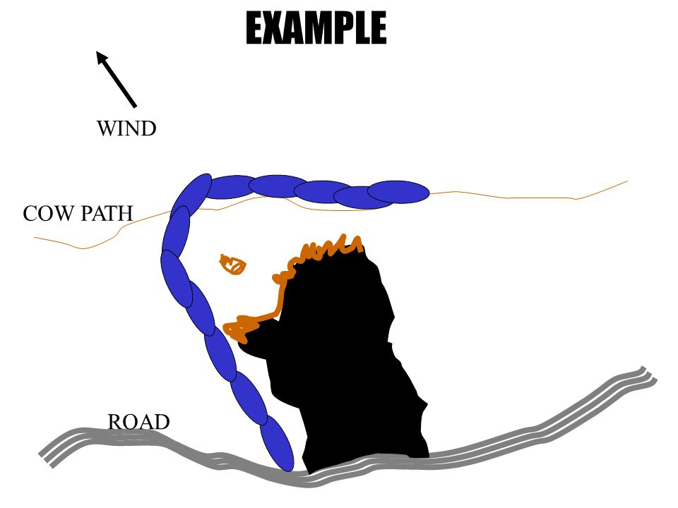 EXAMPLE COW PATH ROAD WIND