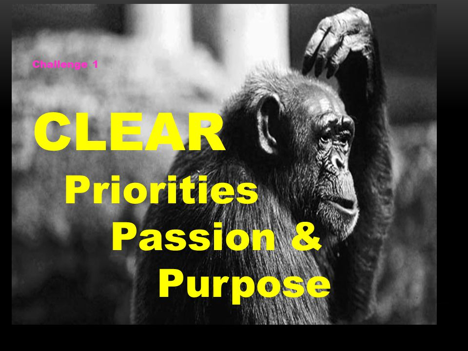 Challenge 1 CLEAR Priorities Passion & Purpose