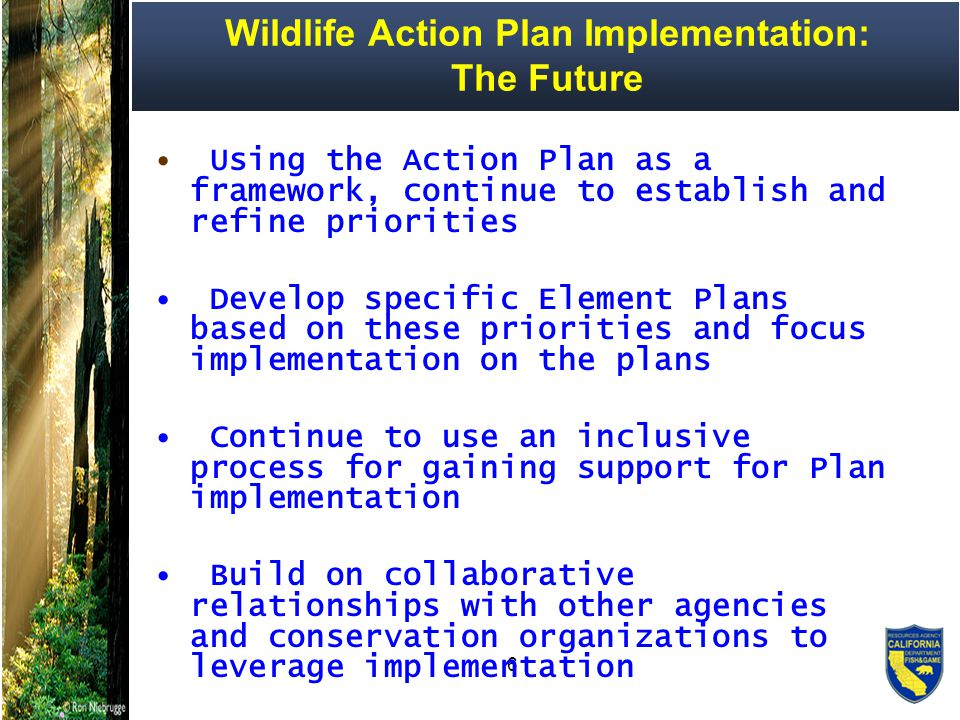 7 Areas of Conservation Emphasis ( ACE ) DFG's Green Infrastructure Planning Identify DFG Priorities for Land Acquisition Develop a Comprehensive Acquisition Strategy Focus DFG and Partnership Efforts Act Quickly on Opportunities