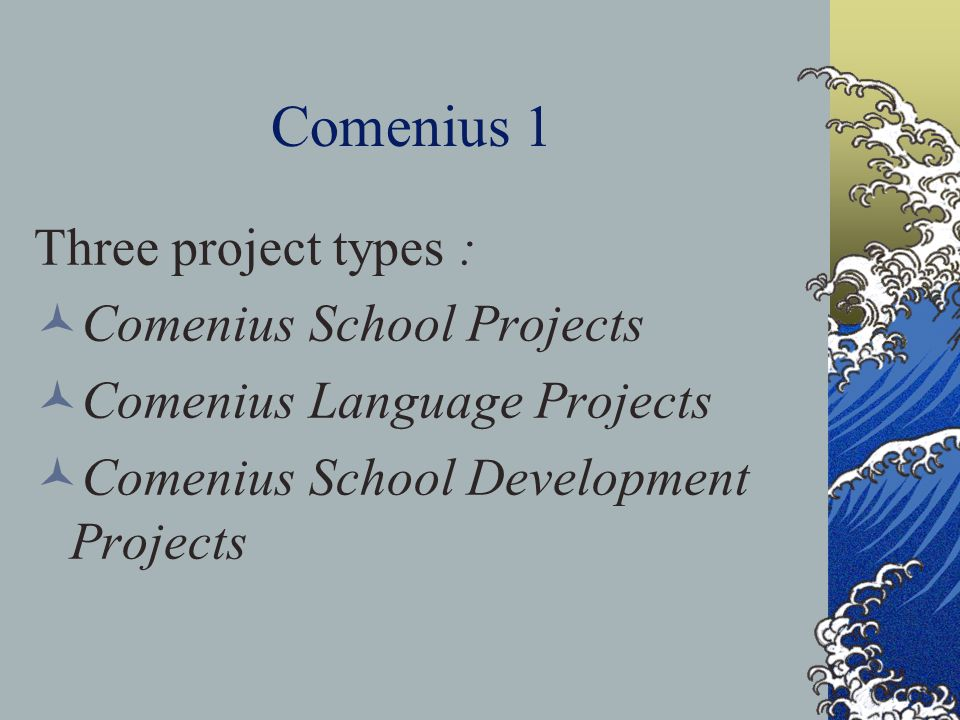 Comenius 1 Three project types : Comenius School Projects Comenius Language Projects Comenius School Development Projects