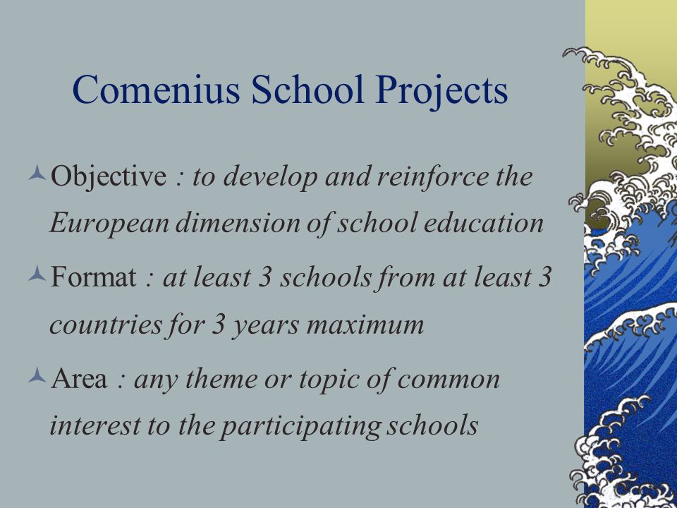 Comenius School Projects Objective : to develop and reinforce the European dimension of school education Format : at least 3 schools from at least 3 countries for 3 years maximum Area : any theme or topic of common interest to the participating schools