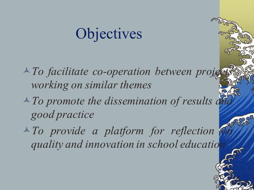 Objectives To facilitate co-operation between projects working on similar themes To promote the dissemination of results and good practice To provide a platform for reflection on quality and innovation in school education