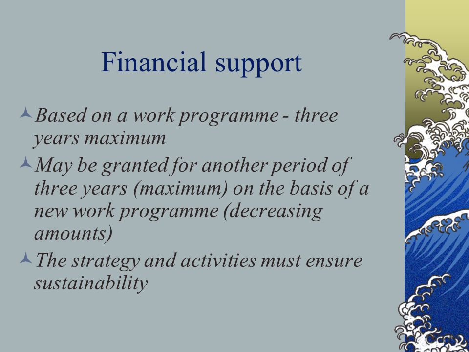 Financial support Based on a work programme - three years maximum May be granted for another period of three years (maximum) on the basis of a new work programme (decreasing amounts) The strategy and activities must ensure sustainability