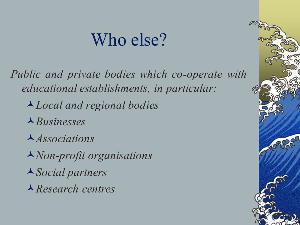 Who else? Public and private bodies which co-operate with educational establishments, in particular: Local and regional bodies Businesses Associations
