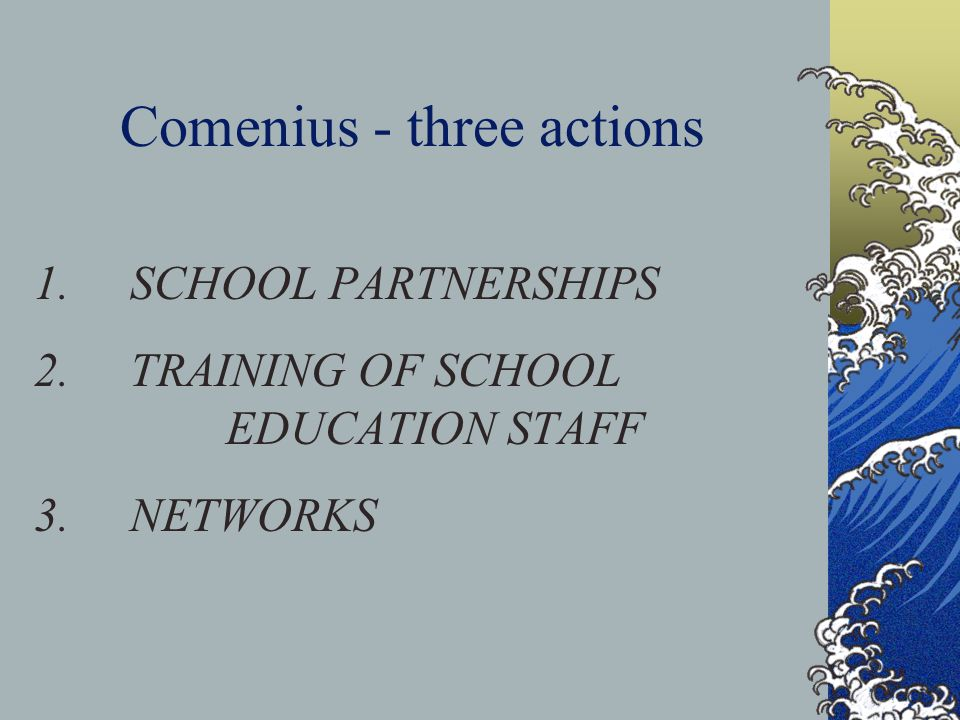Comenius 1 SCHOOL PARTNERSHIPS