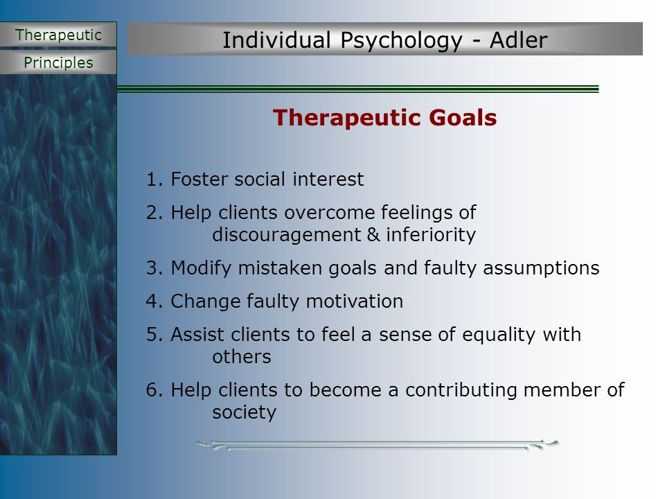 Principles Therapeutic Individual Psychology - Adler Therapeutic Goals 1. Foster social interest 2. Help clients overcome feelings of discouragement &