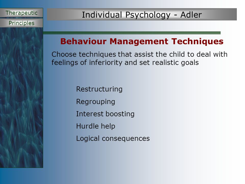 Principles Therapeutic Individual Psychology - Adler Behaviour Management Techniques Choose techniques that assist the child to deal with feelings of