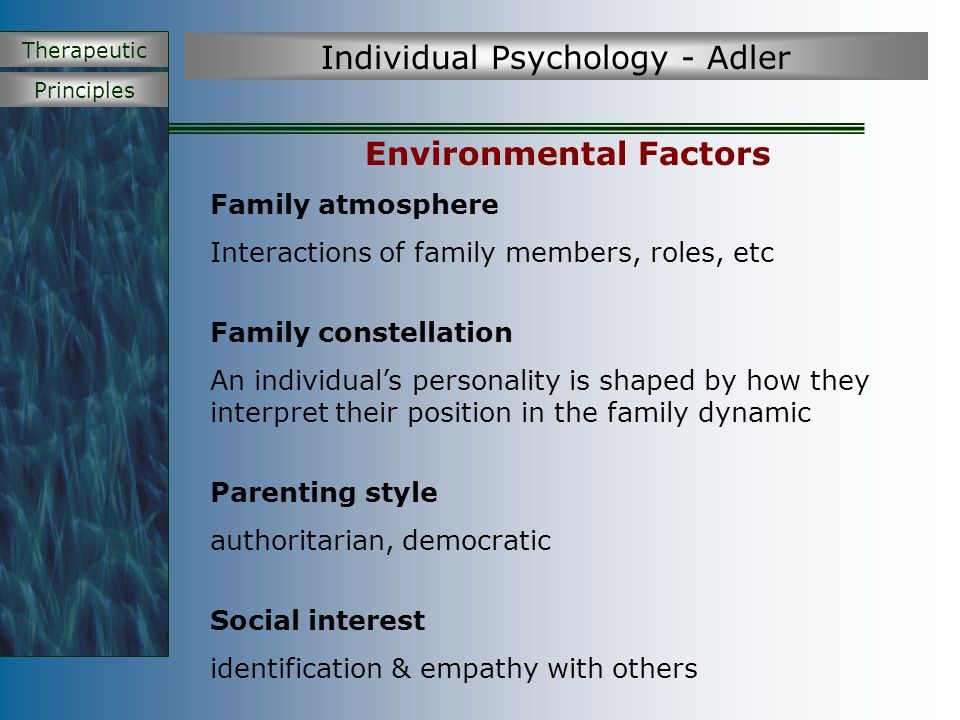 Principles Therapeutic Individual Psychology - Adler Environmental Factors Family atmosphere Interactions of family members, roles, etc Family constel