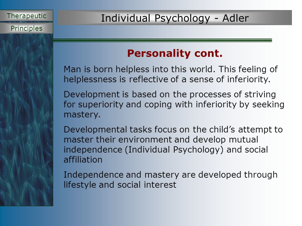 Principles Therapeutic Individual Psychology - Adler Human personality is unified through the development of a life goal Lifestyle The characteristic way in which we move toward our life goal No two people strive for superiority in the same way - Some people develop artistic talent, athletic, intellectual, etc.