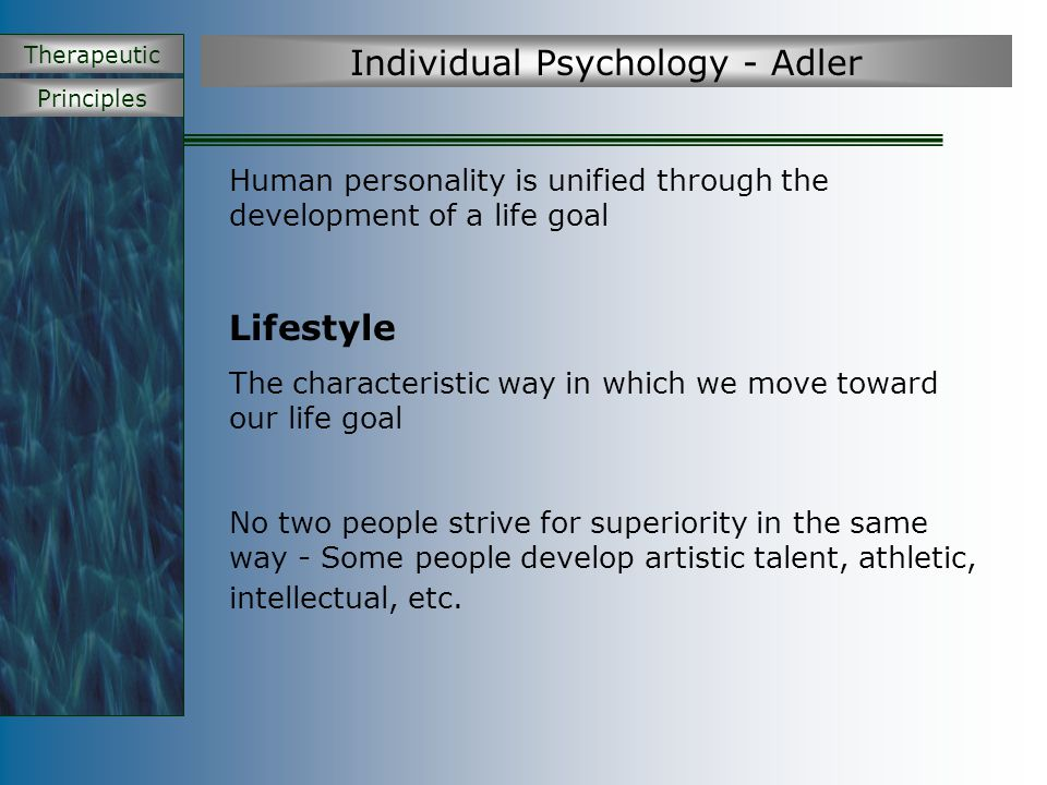 Principles Therapeutic Individual Psychology - Adler Elements of Lifestyle 1.