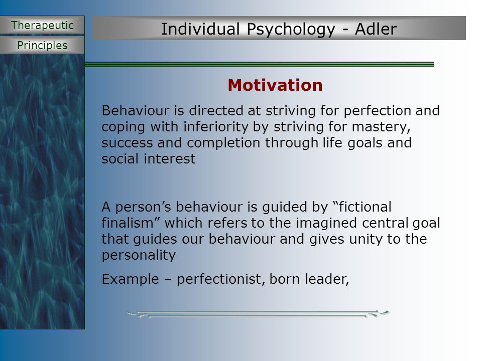 Principles Therapeutic Individual Psychology - Adler Motivation Behaviour is directed at striving for perfection and coping with inferiority by strivi