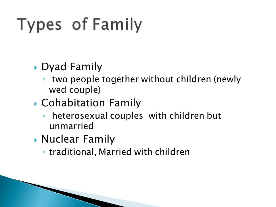  Dyad Family ◦ two people together without children (newly wed couple)  Cohabitation Family ◦ heterosexual couples with children but unmarried  Nuclear Family ◦ traditional, Married with children