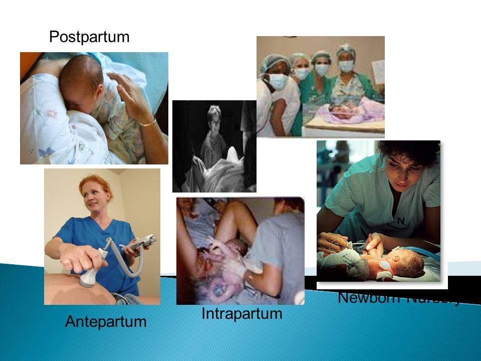 Antepartum Intrapartum Postpartum Newborn Nursery