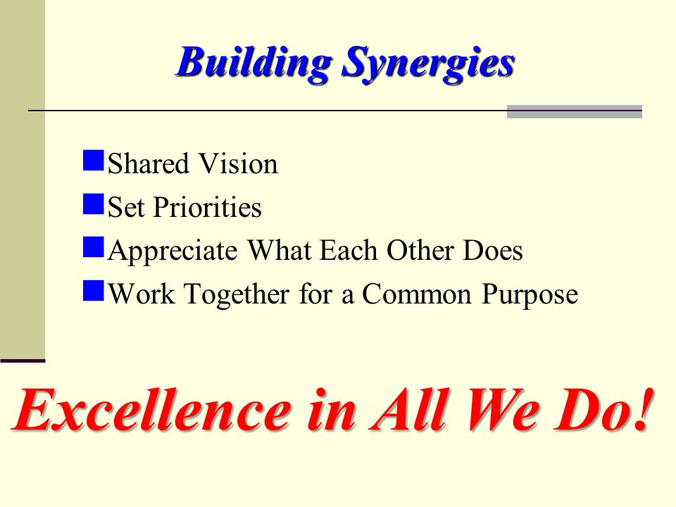 Building Synergies Shared Vision Set Priorities Appreciate What Each Other Does Work Together for a Common Purpose Excellence in All We Do!