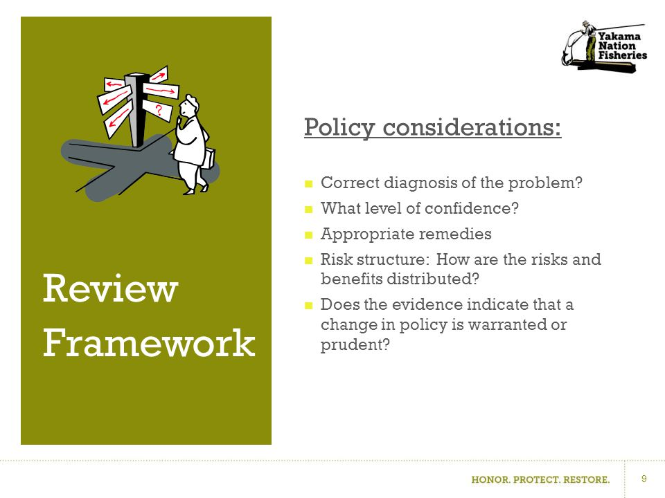 Policy considerations: Correct diagnosis of the problem.