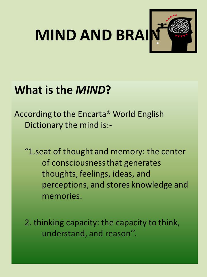 MIND AND BRAIN What is the brain.The brain is the heaviest organ in your body.