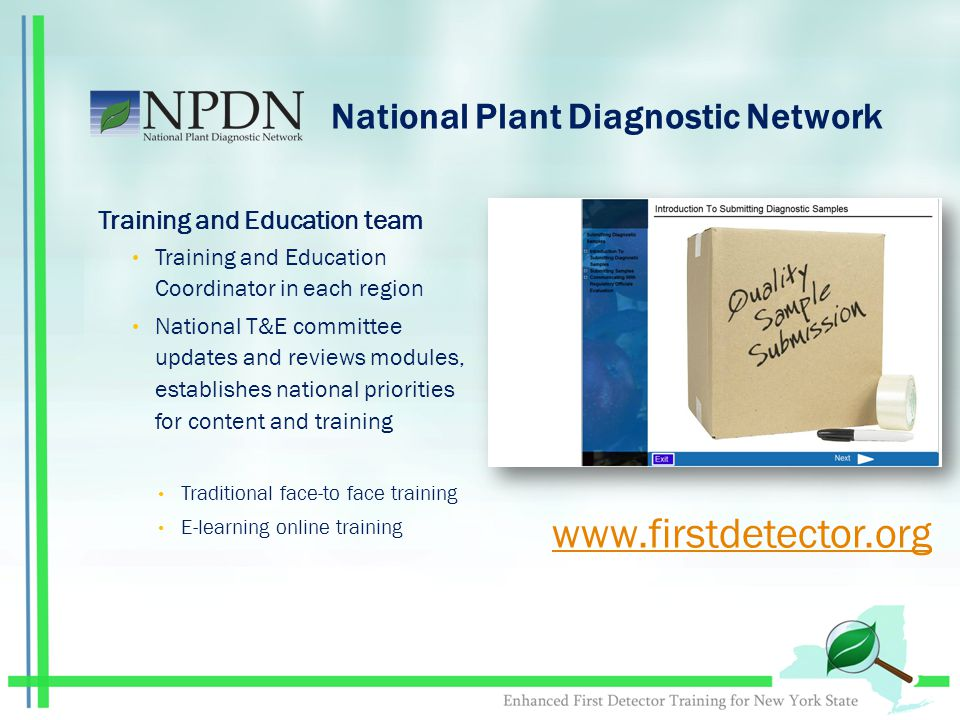 National Plant Diagnostic Network Training and Education team Training and Education Coordinator in each region National T&E committee updates and reviews modules, establishes national priorities for content and training Traditional face-to face training E-learning online training www.firstdetector.org