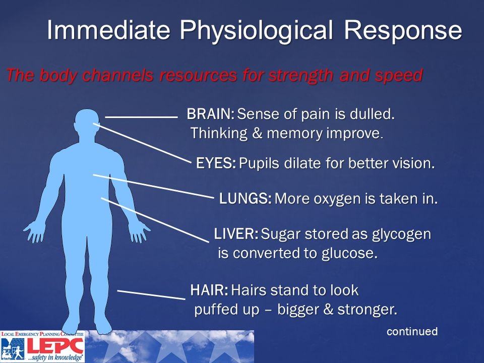 Immediate Physiological Response BRAIN: Sense of pain is dulled.