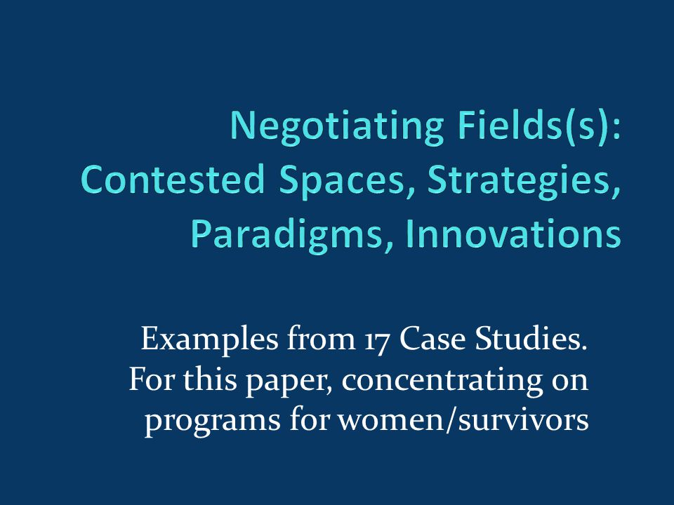 Examples from 17 Case Studies. For this paper, concentrating on programs for women/survivors
