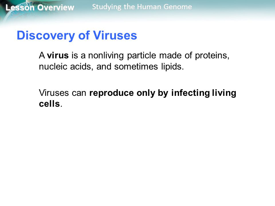 Lesson Overview Lesson Overview Studying the Human Genome Discovery of Viruses A virus is a nonliving particle made of proteins, nucleic acids, and so