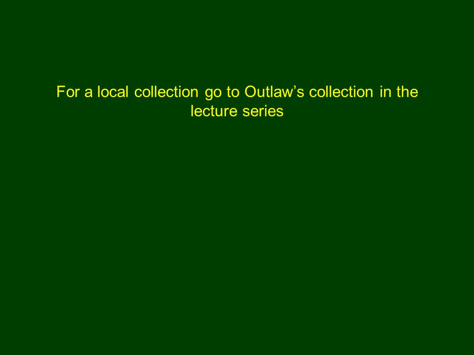 For a local collection go to Outlaw's collection in the lecture series