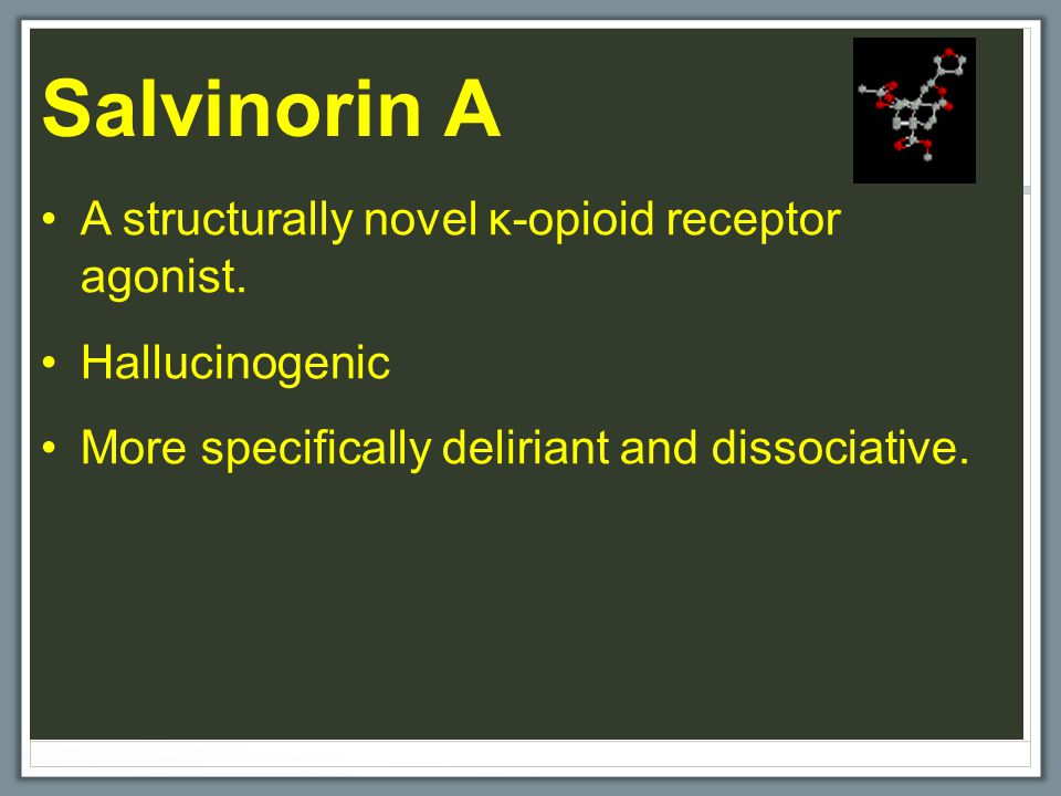 Salvinorin A A structurally novel κ-opioid receptor agonist. Hallucinogenic More specifically deliriant and dissociative.