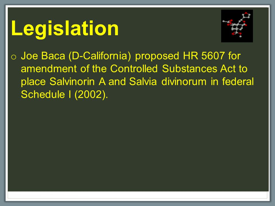 Legislation o Joe Baca (D-California) proposed HR 5607 for amendment of the Controlled Substances Act to place Salvinorin A and Salvia divinorum in federal Schedule I (2002).
