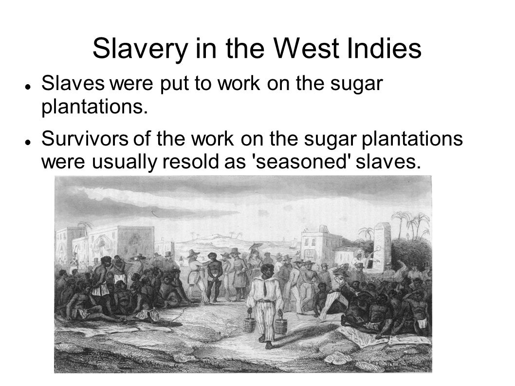 Slavery in the West Indies Slaves were put to work on the sugar plantations.