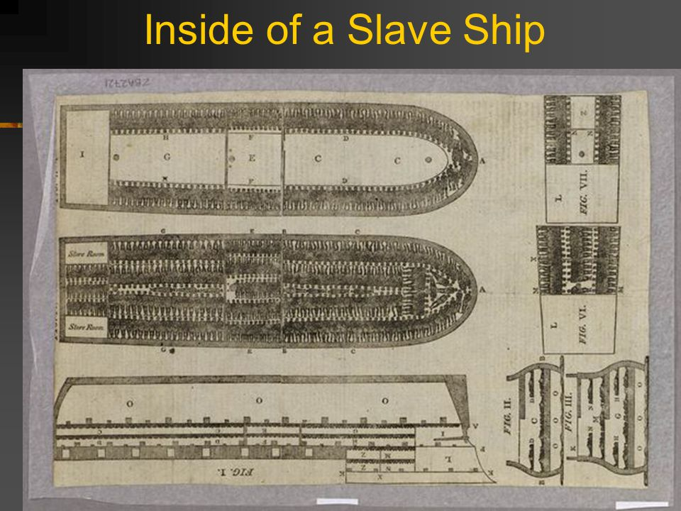 The Middle Passage **Myth # 5 - About 1% of all slaves brought over to the New World died on the way.