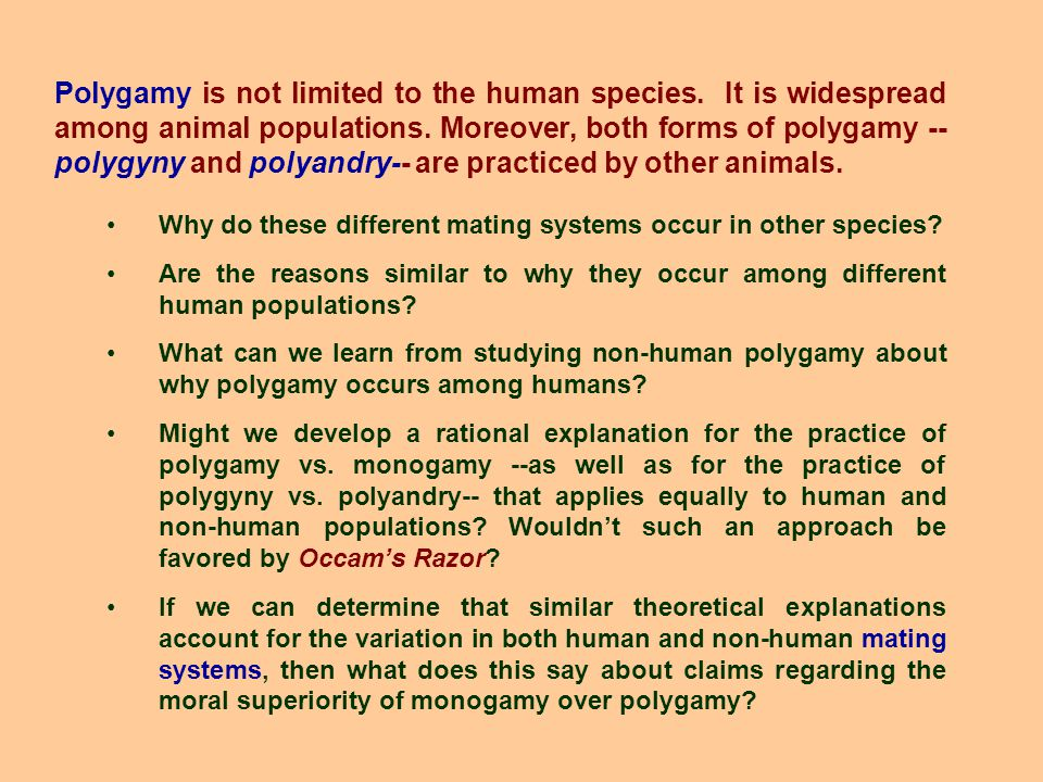 Polygamy is not limited to the human species. It is widespread among animal populations.