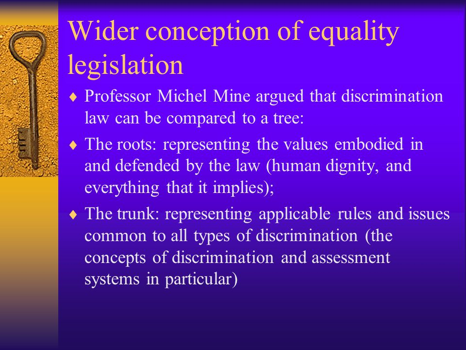 Wider conception of equality legislation  Professor Michel Mine argued that discrimination law can be compared to a tree:  The roots: representing the values embodied in and defended by the law (human dignity, and everything that it implies);  The trunk: representing applicable rules and issues common to all types of discrimination (the concepts of discrimination and assessment systems in particular)