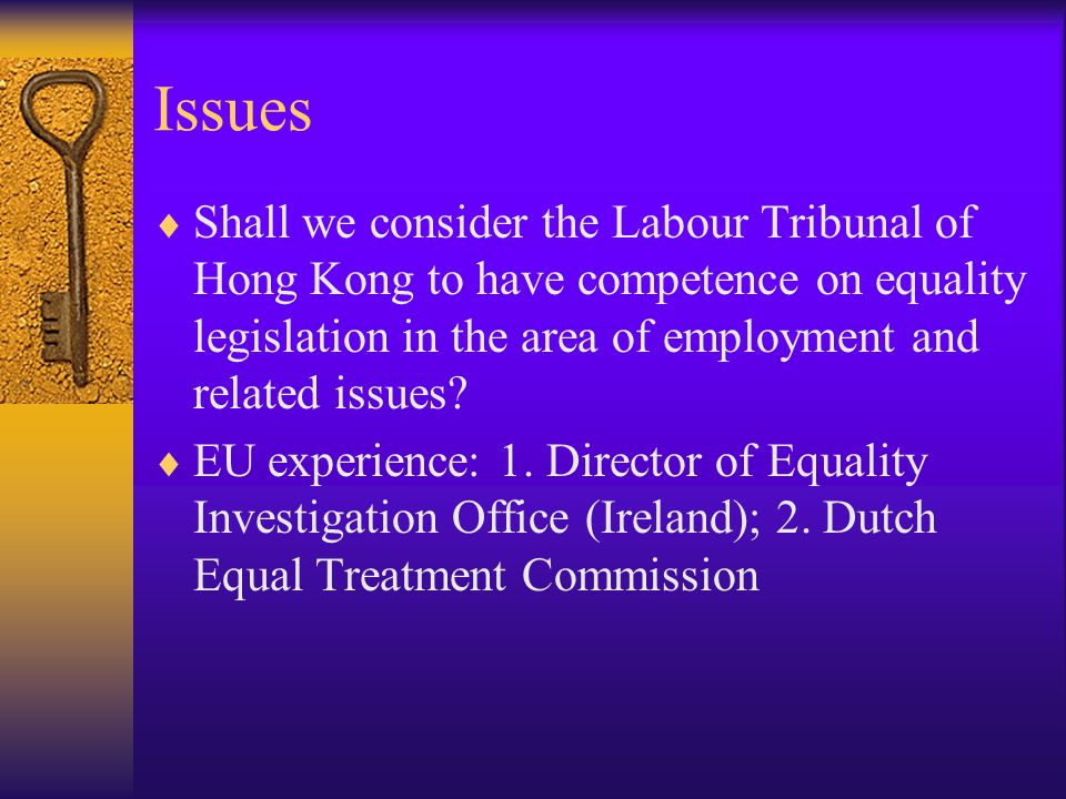 Issues  Shall we consider the Labour Tribunal of Hong Kong to have competence on equality legislation in the area of employment and related issues.