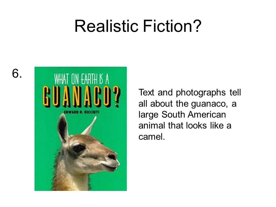Realistic Fiction.