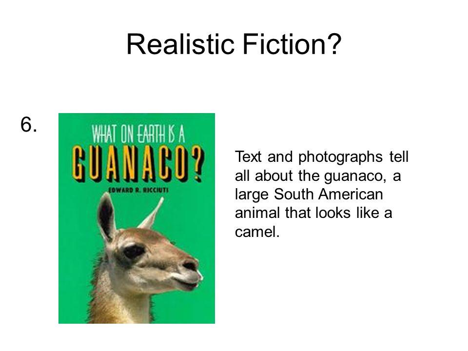 Realistic Fiction.