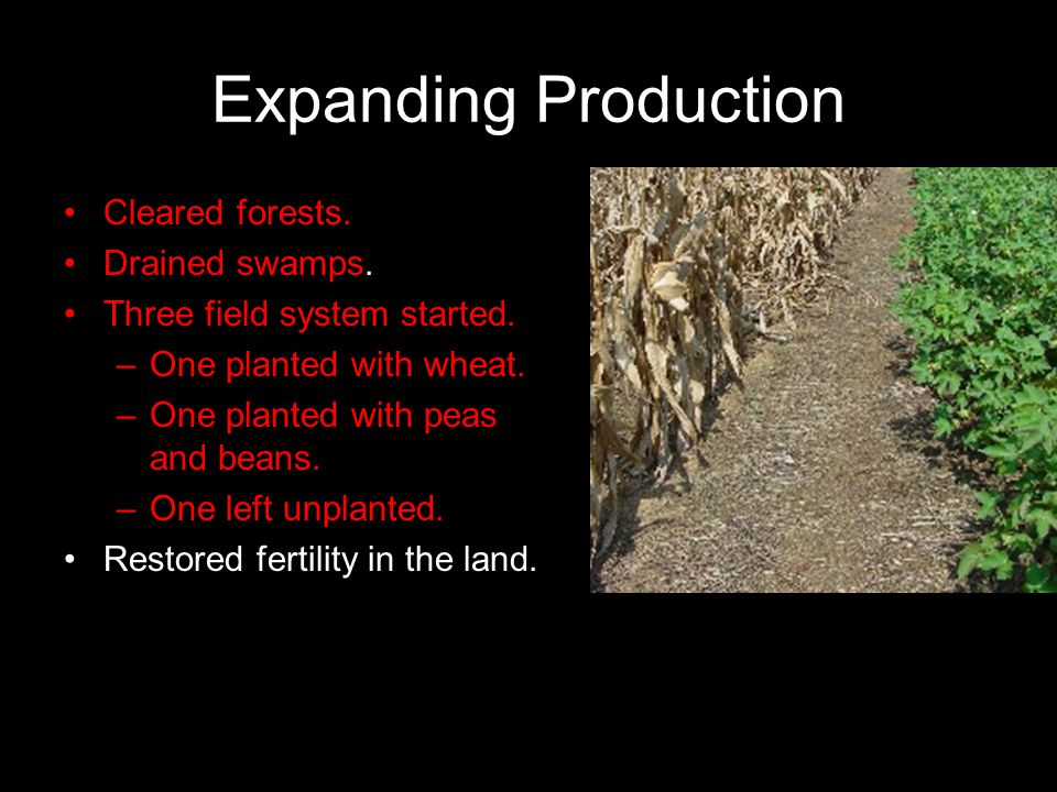 Expanding Production Cleared forests. Drained swamps. Three field system started. –One planted with wheat. –One planted with peas and beans. –One left