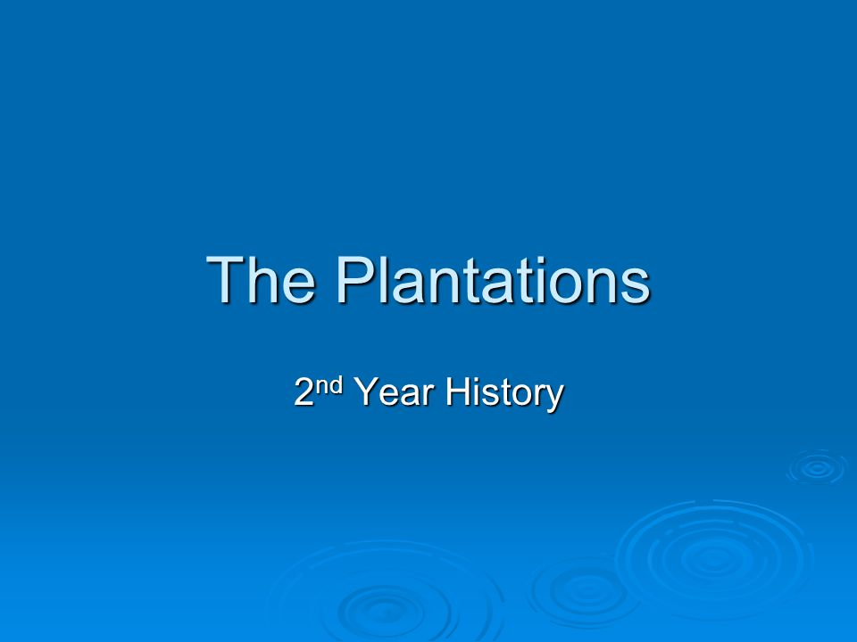 The Plantations 2 nd Year History