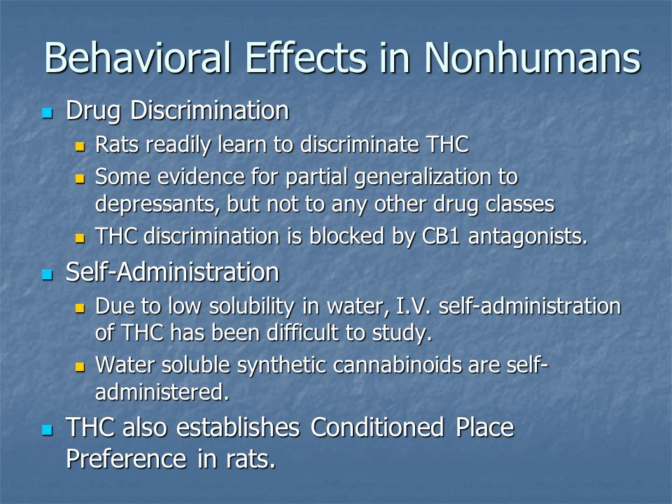 Behavioral Effects in Nonhumans Drug Discrimination Drug Discrimination Rats readily learn to discriminate THC Rats readily learn to discriminate THC Some evidence for partial generalization to depressants, but not to any other drug classes Some evidence for partial generalization to depressants, but not to any other drug classes THC discrimination is blocked by CB1 antagonists.