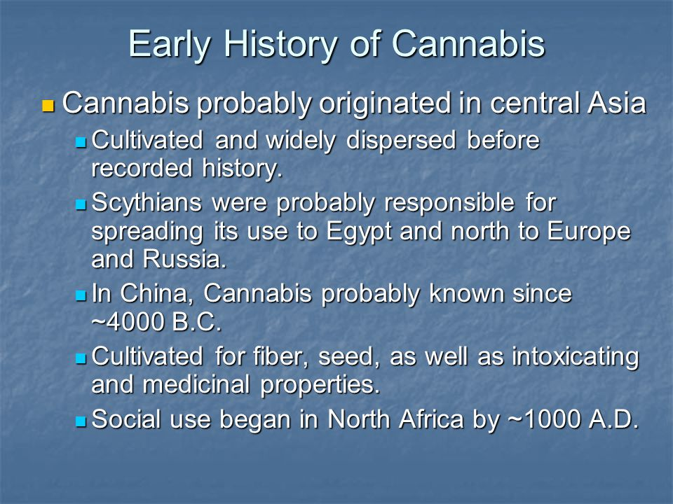 Early History of Cannabis Cannabis probably originated in central Asia Cannabis probably originated in central Asia Cultivated and widely dispersed before recorded history.
