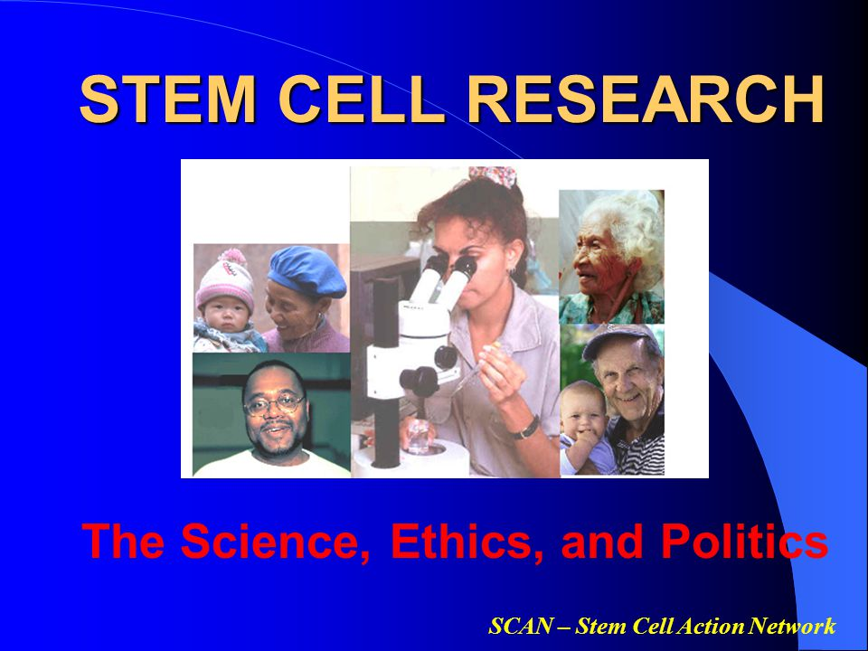 the debates regarding the scientific research of the stem cells in the biology Stem cells - science and with consideration of the legal and ethical issues of research using stem cells to the curricula of biology and biology-based.