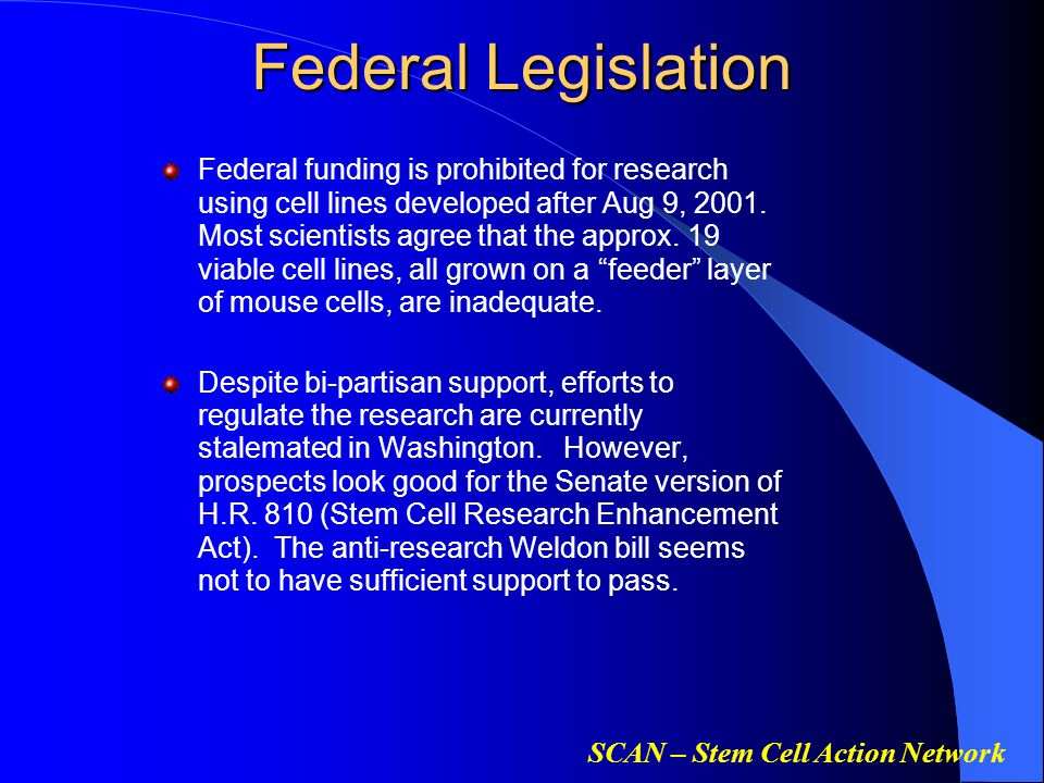 SCAN – Stem Cell Action Network Federal Legislation Federal funding is prohibited for research using cell lines developed after Aug 9, 2001.