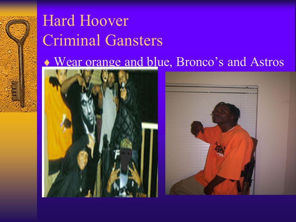 Hard Hoover Criminal Gansters  Wear orange and blue, Bronco's and Astros